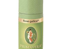 Roos Gallica conv. 1 ml. 10262